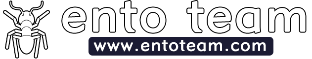 ENTO Team